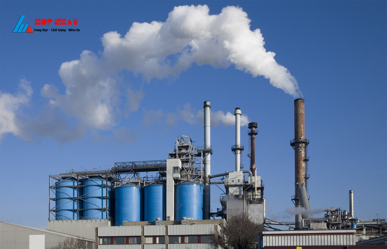 Lọc sinh học Biofilter trong xử lý khí thải