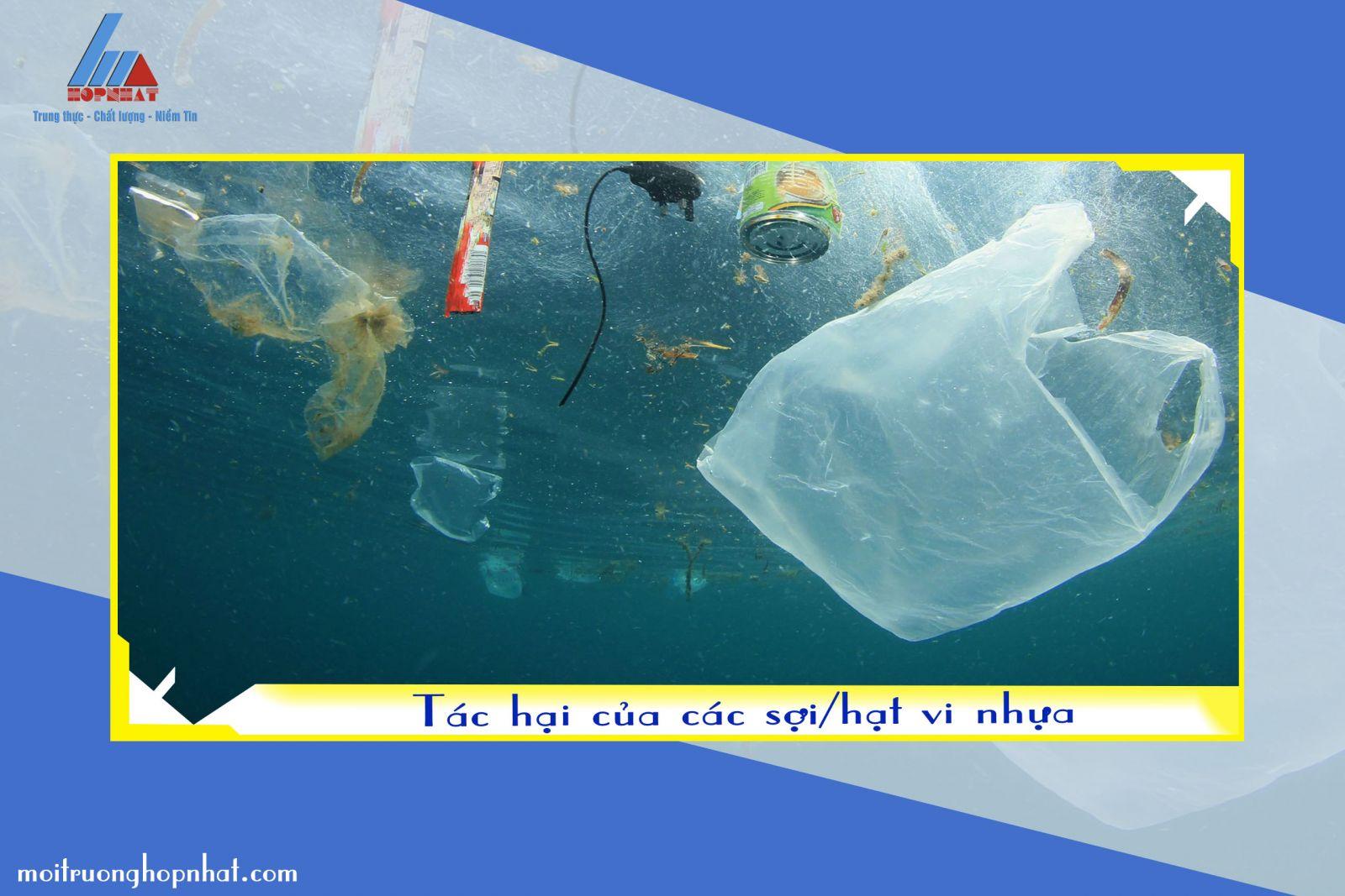 Tác hại của các sợi/hạt vi nhựa