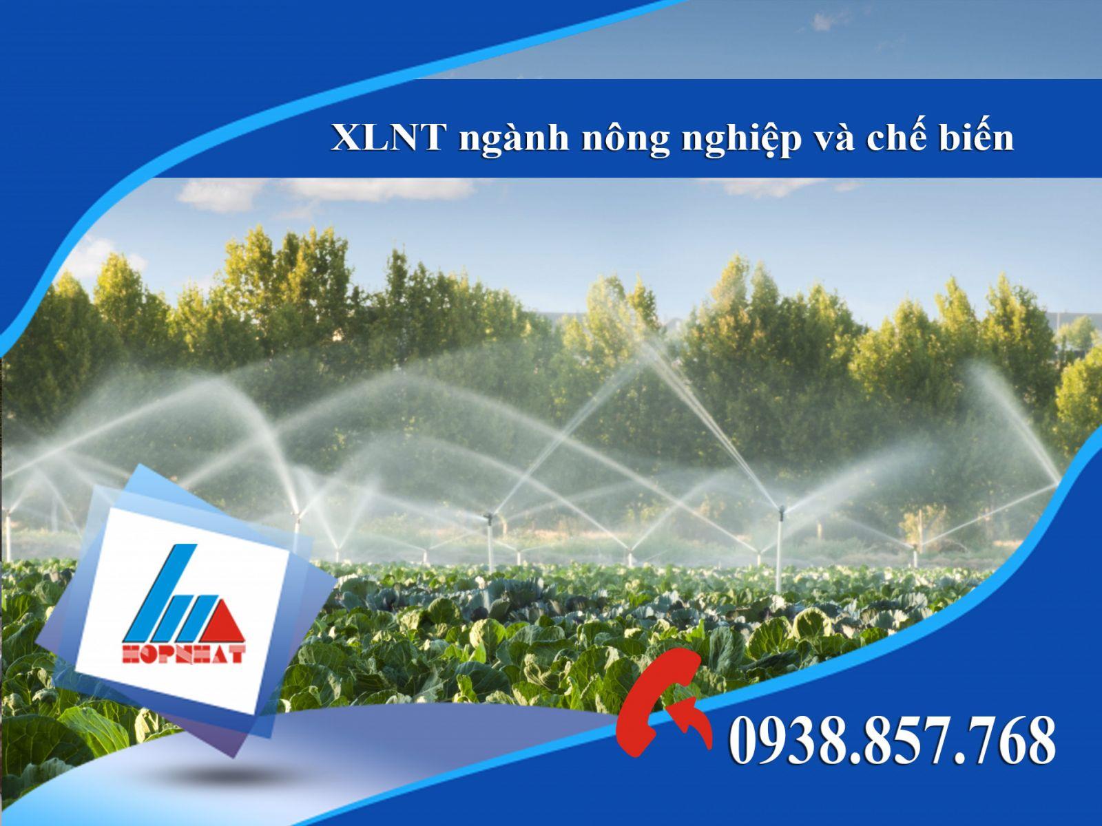 XLNT ngành nông nghiệp và chế biến