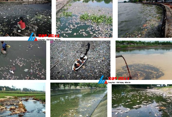Làm sao để xử lý nguồn nước thải ô nhiễm?