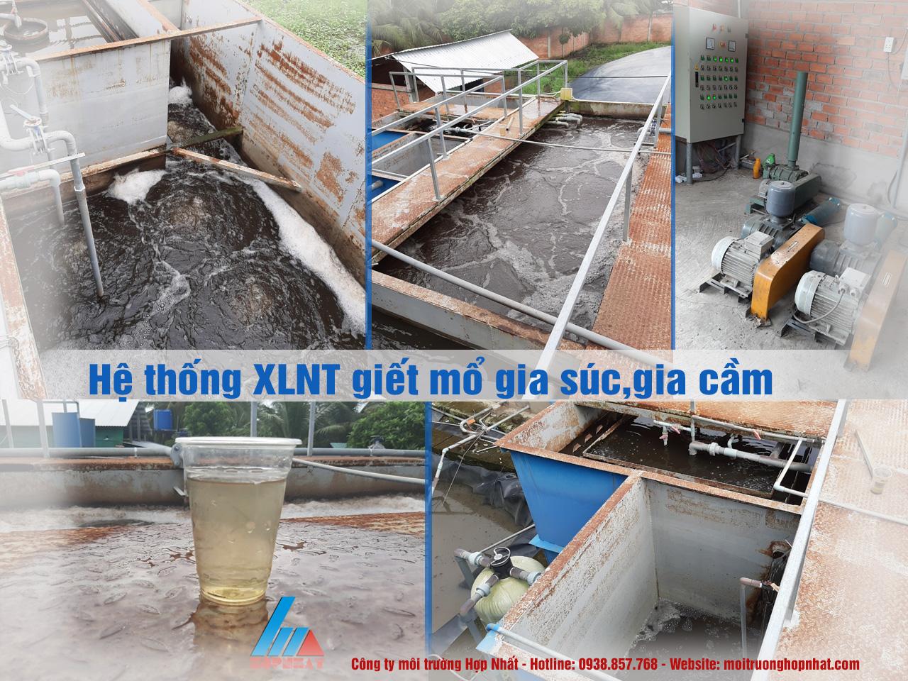 xử lý nước thải giết mổ gia súc