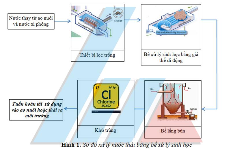 xử lý nước thải ao nuôi tôm